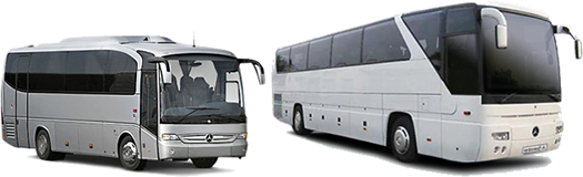 24 seater buses and 49 seater coaches