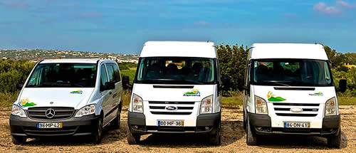 Mercedes and Ford Vans