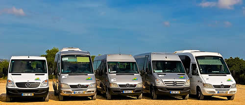 Mercedes mini-buses for private transfers
